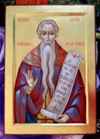 Sfantul Cuvios Ioanichie de la Muscel-Ocrotitor al crestinilor argeseni!